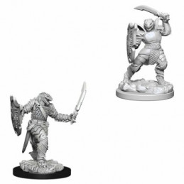 D&D NOLZUR\'S MARVELOUS MINIATURES - PALADINO DRAGONIDE FEMMINA