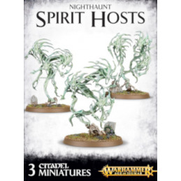 SPIRIT HOSTS