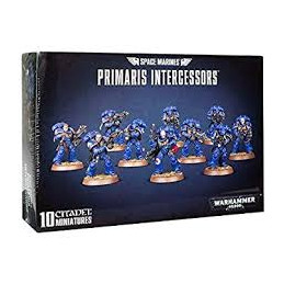 SPACE MARINES PRIMARIS INTERCESSORS (10)