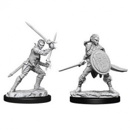 D&D DEEP CUTS MINIATURES - GUERRIERO ELFO FEMMINA