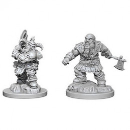 D&D NOLZUR\'S MARVELOUS MINIATURES - BARBARO NANO MASCHIO