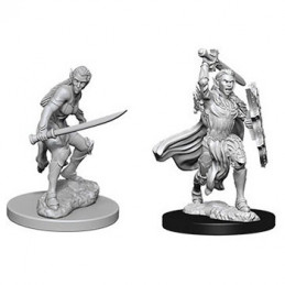 D&D NOLZUR\'S MARVELOUS MINIATURES - GUERRIERO ELFO FEMMINA